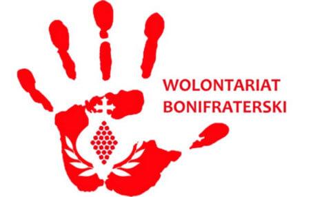 logo_wolontariat1