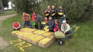 Pracownia Ogrodnicza Handlu iUsług